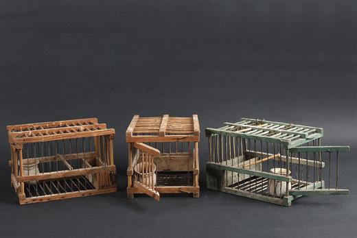 Les loisirs la chasse et les jeux dans les collections for Oiseau domestique interieur
